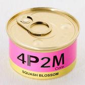四平二月 柑橘花香木SQUASH BLOSSOM / 4P2M