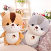 毛絨玩具 - 可愛小松鼠公仔毛絨玩具萌軟體睡覺倉鼠抱枕兒童禮物【韓衣舍】