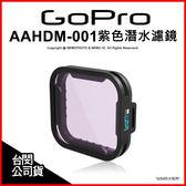 GoPro 原廠配件 AAHDM-001 紫色潛水濾鏡 Hero 5 60M防水殼 適用 淡水 浮潛★刷卡★薪創