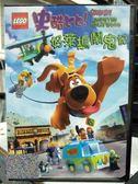 影音專賣店-Y28-073-正版DVD-動畫【樂高史酷比:好萊塢鬧鬼記】-史酷比與朋友們的第一部樂高電影
