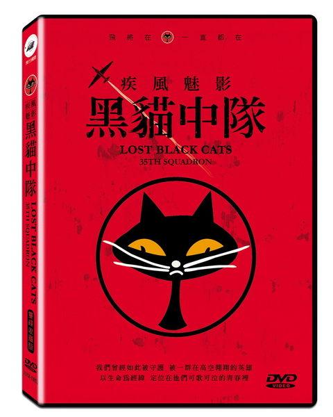 【停看聽音響唱片】【DVD】疾風魅影:黑貓中隊雙碟收藏版