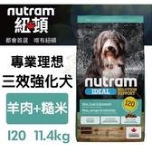 *KING*紐頓《專業理想-I20三效強化犬/羊肉糙米配方》11.4kg