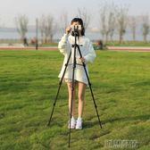 三腳架 相機微單便攜專業三角架 攝影手機支架攝像  創想數位igo