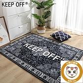 地毯客廳臥室鞋墻床邊地墊家用毛毯墊【小獅子】