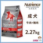 Nutrience紐崔斯『 INFUSION天然成犬 (牛肉+豬肉)』2.27kg【搭嘴購】