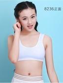 少女發育期文胸內衣小背心薄