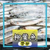 帶卵柳葉魚1包約10隻(300g±5%),便宜的超優惠的價格即可享受滿嘴的魚卵好滋味