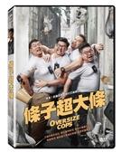 【停看聽音響唱片】【DVD】條子超大條