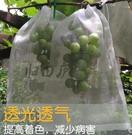 楊桃火龍果水果網袋