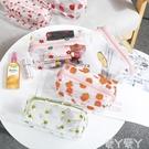 化妝包韓國泫雅花朵透明防水化妝包女便攜大容量少女收納旅行洗漱包