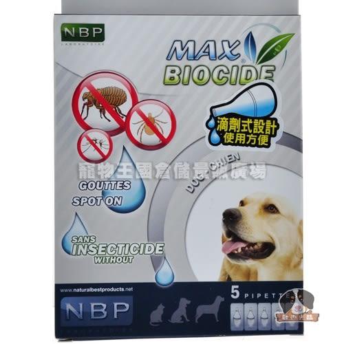 【寵物王國】西班牙NBP-天然犬用驅蝨滴劑(五劑入)