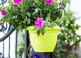【新年鉅惠】管道掛式花盆塑料創意大號捆綁式圓形掛盆室內室外吊籃盆栽