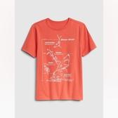 Gap男童棉質舒適圓領短袖T恤539391-深木瓜黃