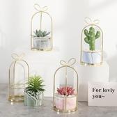 仿真花ins北歐多肉仿真植物仙人掌盆栽室內客廳綠植裝飾假花桌面小擺件 衣間迷你屋