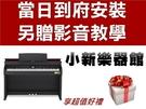 Casio 卡西歐 AP-710 88鍵...