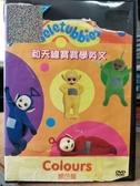挖寶二手片-T04-279-正版DVD-動畫【和天線寶寶學英文:顏色篇】(直購價)海報如圖破損