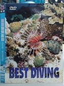 挖寶二手片-O08-024-正版DVD*電影【浪漫海洋風情 菲律賓、密克羅尼亞】-