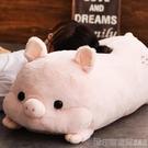豬豬暖手抱枕插手公仔毛絨玩具可愛大號陪睡覺布娃娃男女孩玩偶萌 印象