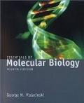 二手書博民逛書店《Essentials of Molecular Biology