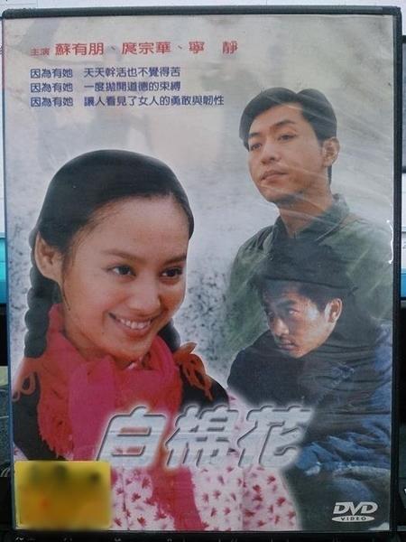 挖寶二手片-H43-007-正版DVD-華語【白棉花】-蘇有朋 庹宗康 寧靜(直購價)