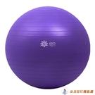 瑜伽球健身球加厚防爆瑜珈球兒童大龍平衡孕婦分娩球【公主日記】
