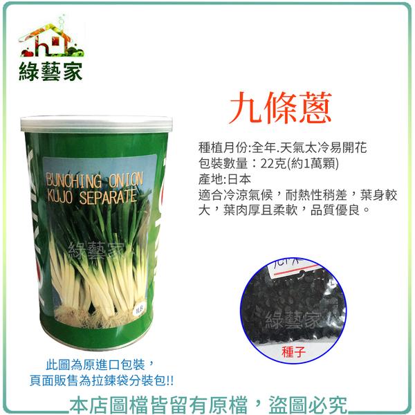 【綠藝家】大包裝00D08.九條蔥種子22克(約1萬顆)