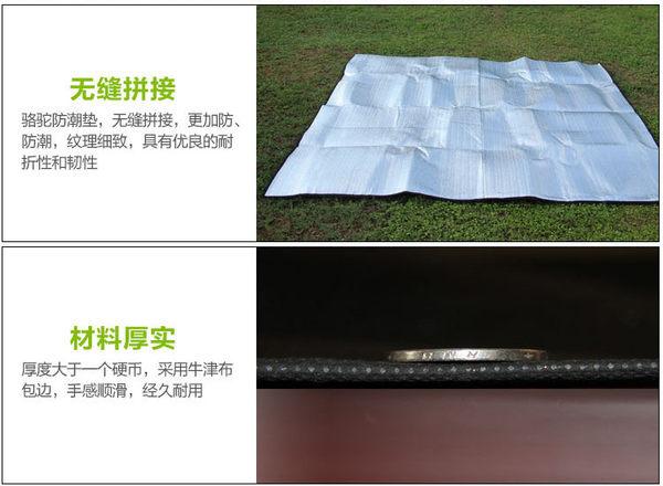 超大無拼接雙面鋁箔防潮墊 戶外野餐墊 加厚野營帳篷墊 地墊 1x2mx0.6cm