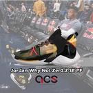 Nike Jordan Why Not ...