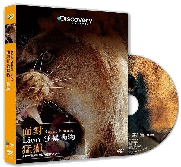 面對狂暴動物 猛獅 DVD (購潮8)