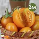 【果之家】高雄鮮採薄皮橙蜜香蕃茄2台斤