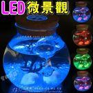 LED微景觀生態瓶 情人節 生日禮物LE...