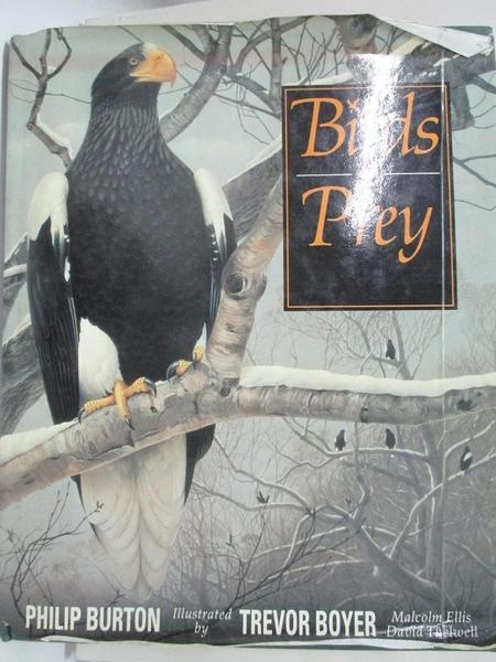 【書寶二手書T4/動植物_KJ1】Birds of Prey_Philip Burton