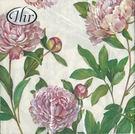 新貨到!粉紅牡丹-德國 IHR 餐巾紙(33x33cm)
