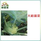 【綠藝家】C08.大結頭菜種子10顆(荷...
