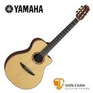 【預購】YAMAHA 山葉 NTX3 全單板 可插電古典吉他 附輕體盒