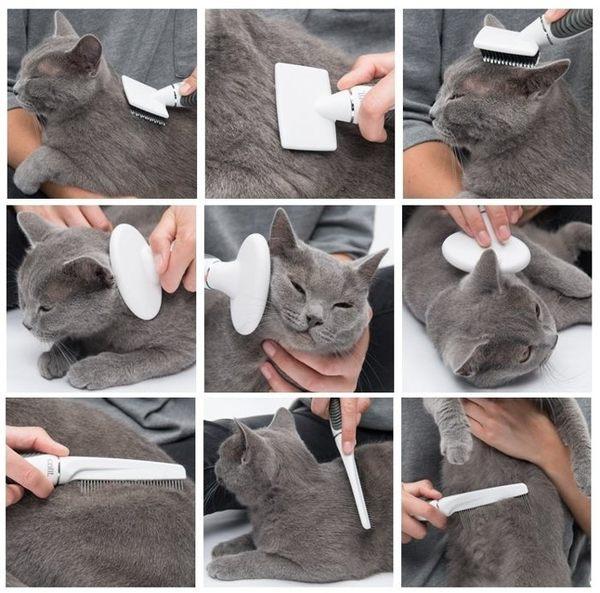 *WANG*喵星樂活 CATIT2.0 寵物修容組(短毛組)