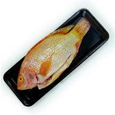 【陽光農業】國產冷凍尼羅紅魚 (約400g/尾)