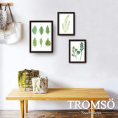 TROMSO風格黑爵海報相框牆三件組 綠葉森林