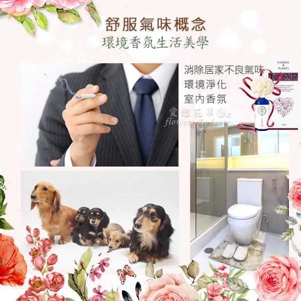 【愛戀花草】白檀+風信子+馬鞭草+香蜂草 擴香精油100ML / 四瓶組 (山茶花系列)