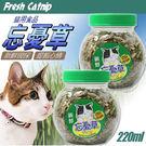 【培菓平價寵物網】《忘憂草》貓草薄荷220ml