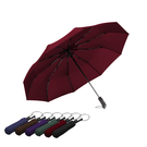 傘霸 大傘面10骨自動摺疊傘