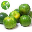 台灣青皮椪柑*1箱(25A/5斤/約15顆/箱)
