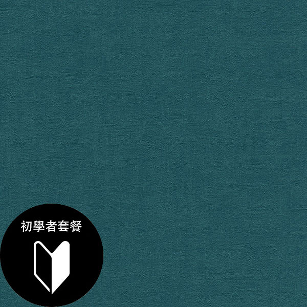 深藍色素色壁紙  rasch(德國壁紙) 2020 /490091+施工道具套餐