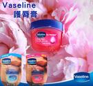 貨比三家 Vaseline 凡士林 Q版 瓶裝 護唇膏 潤唇膏 7g 保濕 滋潤 玫瑰/經典 防乾裂乾燥 唇蜜