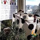 收納籃波點奶牛北歐臟衣筐臟衣服桶收納筐可折疊家用【創世紀生活館】