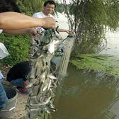 單層捕小魚粘網小眼絲網掛子網餐條馬口沉網浮網小白條魚網漁網