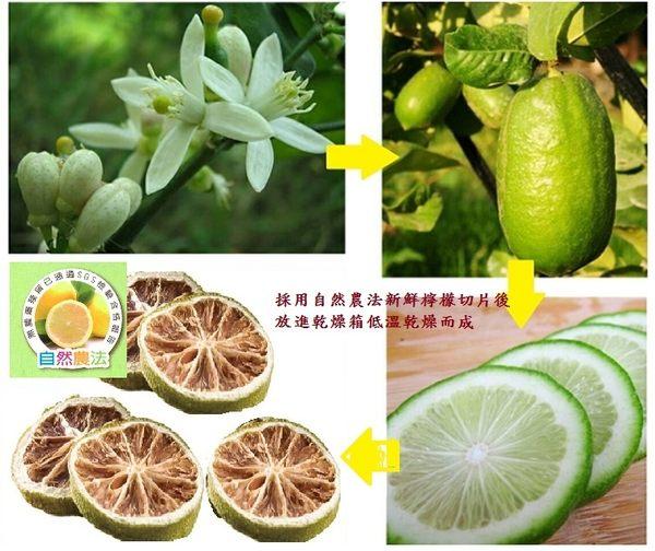 台灣香水檸檬水/香水檸檬/40g(10包入)