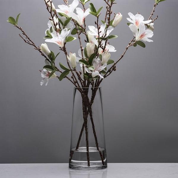 北歐T型簡約玻璃花瓶透明圓柱花器客廳餐桌家居裝飾插花花瓶時尚擺設 rj2844【bad boy時尚】