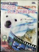 影音專賣店-P09-299-正版DVD-電影【奇妙的動物世界 陸上最大的動物】-海報封面破損