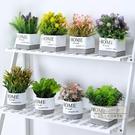 仿真花束 北歐仿真植物綠植小盆栽ins室內家居擺件客廳辦公桌裝飾假花創意-全館88折起
